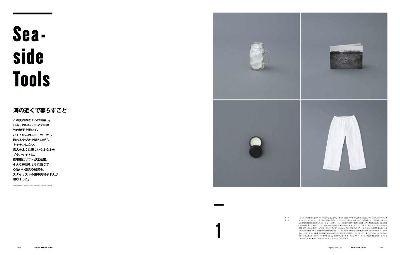 anna magazine Vol.2 P74